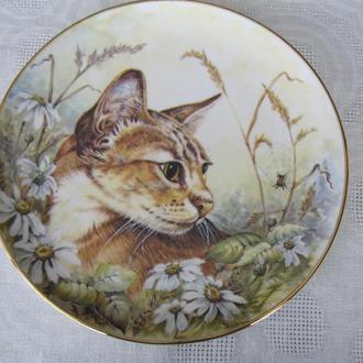 Чудесная коллекционная тарелка Кот,кошка,котик! Костяной фарфор,Англия!