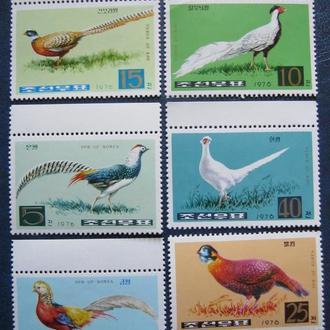 фауна птицы фазаны  корея т