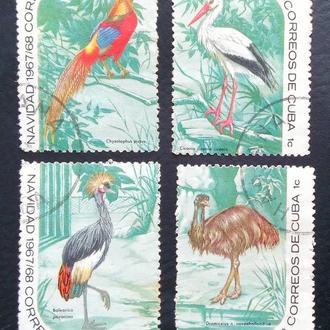 почтовая марка Птицы Куба 1967-1968