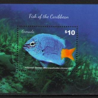 Гренада 2015 Фауна Рыбы Карибы блок MNH **