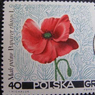 Польша 1967
