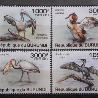 Бурунди 2011 ** Фауна Птицы Цапли Пеликаны серия MNH