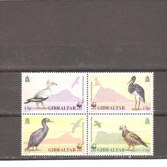 Фауна  Гибралтар  1991г.  MNH  (см. опис.)