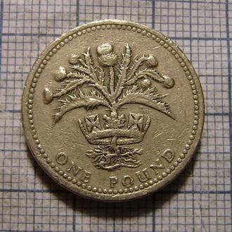 Великобритания, 1 фунт 1984 г куст репейника