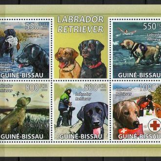 Гвинея-Бисау 2010 Фауна Собака друг человека мл 14 евро MNH **