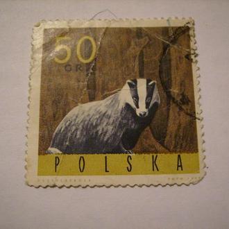 Животные Польша 1965 и 1970
