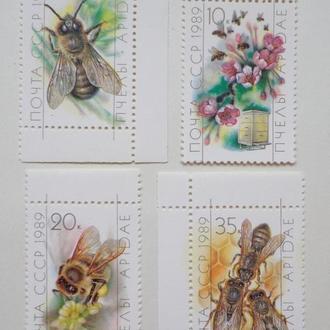 Пчелы . СССР 1989 г