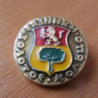 Вязники  Золотое кольцо (2)
