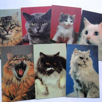 Календарики СССР коты кошки 1990 г.