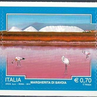 фауна Италия-2014 соляные озера, фламинго