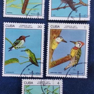 Куба 1977г. Птицы