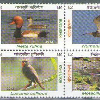 Бангладеш 2012 птицы