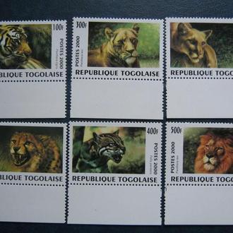 фауна коты кошки тигры львы Того    на    т