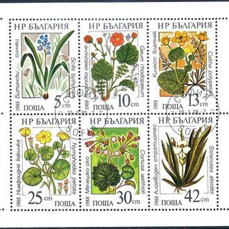 Болгария. Цветы (серия, м/л) 1988 г.