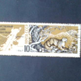 СССР 1967 Государственный заповедник Кедровая Падь