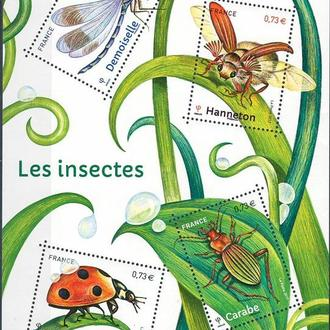 фауна Франция-2017 насекомые, м/л