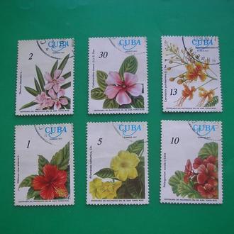 Куба 1977 Цветы  * полн. сер.