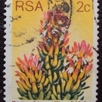 Южная Африка 1977г