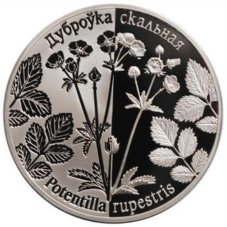 Беларусь 1 рубль 2017 г., PROOF, 'Возрожденные растения - Лапчатка скальная'