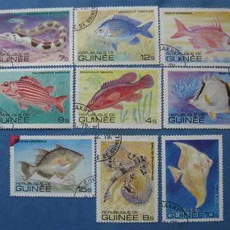 Гвинея 1979 год Фауна, Рыбы