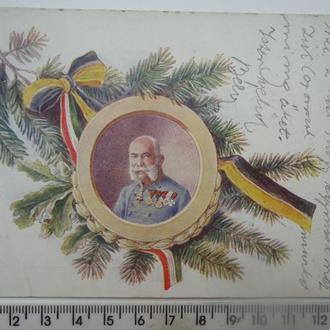 1915 г австро-венгрия Ф.Иосиф  юбилейная открытка