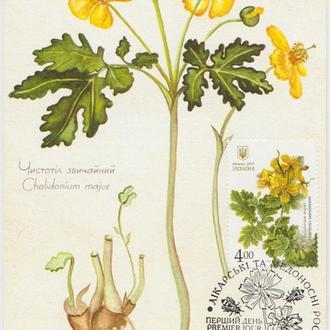 Картмаксимум Лікарські рослини - Чистотіл звичайний