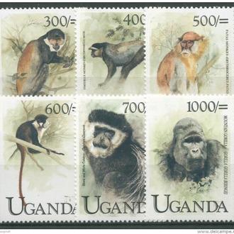 Уганда. Фауна. Животные.