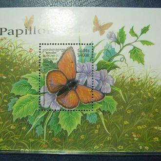 butterfly насекомые бабочки метелики камбоджа т
