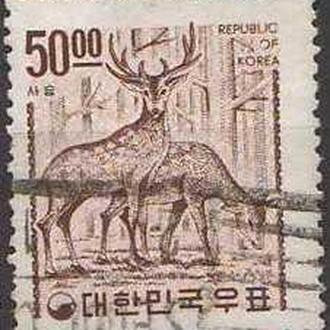 фауна Ю.Корея-1963 олени, стандарт