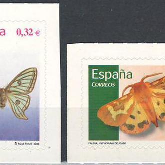 фауна Испания-2009 бабочки