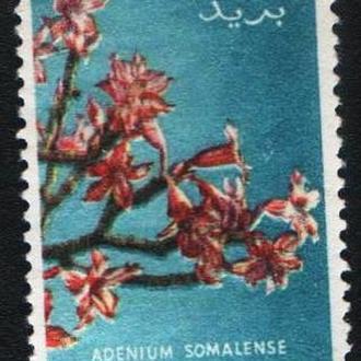 Сомали (1955) Итальянский мандат. Флора. Цветы. Адениум