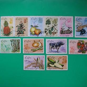 Куба 1969 Овощи  *