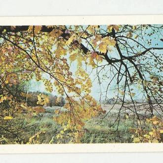 Календарик 1977 Аэрофлот, природа
