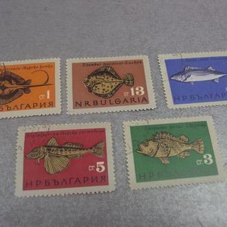 марки болгария рыбы серия лот 5 шт №20