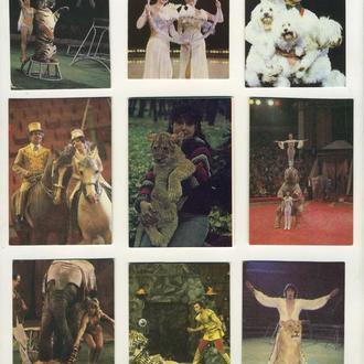 Карманные календарики Цирк 9 шт. (№7)