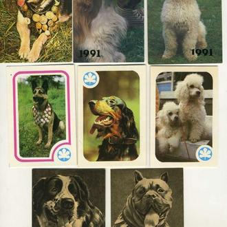 Карманные календарики Животные Собаки 8 шт. (№8)