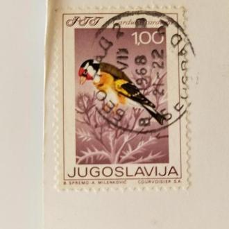 Марка Югославия 1968 год + Открытка