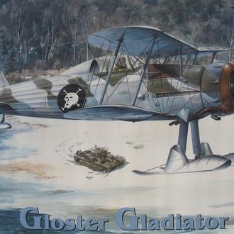 Сборная модель самолета Gloster Gladiator Mk.II / Sea Gladiator 1:48 Roden