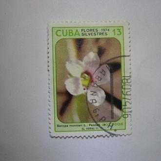 Марка Куба 13