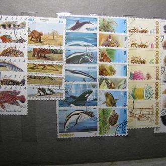 Набір марок 12 - 492 шт