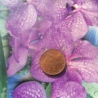 Словакия 1цент 2011г