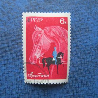 марка СССР 1968 коневодство и конный спорт Арабская гаш