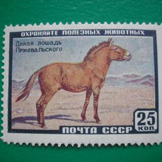 СССР 1959 Фауна  Лошадь  MNH