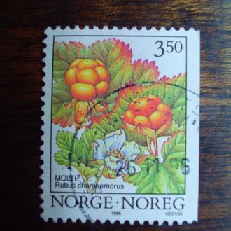 Норвегия.1996г. Флора. Ягоды.