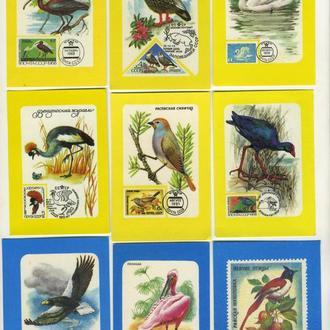 Карманные календарики Почтовые Марки Животные Ппицы 9 шт. (№2)