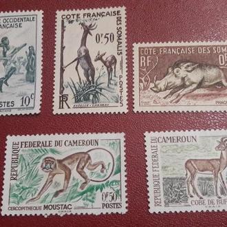 5 марок Африка Камерун 1965