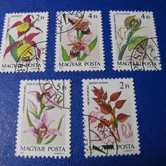 Флора Квіти Угорщина Венгрия