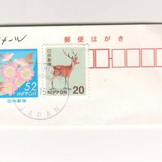Япония. Флора. Фауна. 503