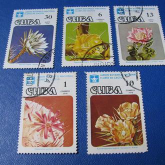 Флора Квіти Куба