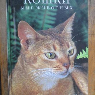 Кошки. Мир животных.